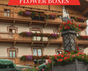 Austrian window boxes are all the inspiration I need to plant my own balcony flowers!