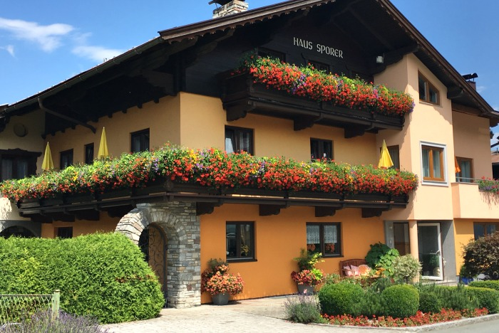 Austrian window boxes