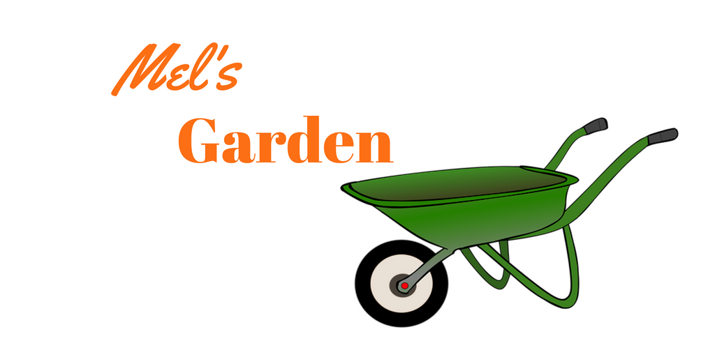 Best Electric Lawn Mower Guide - Mel's Garden