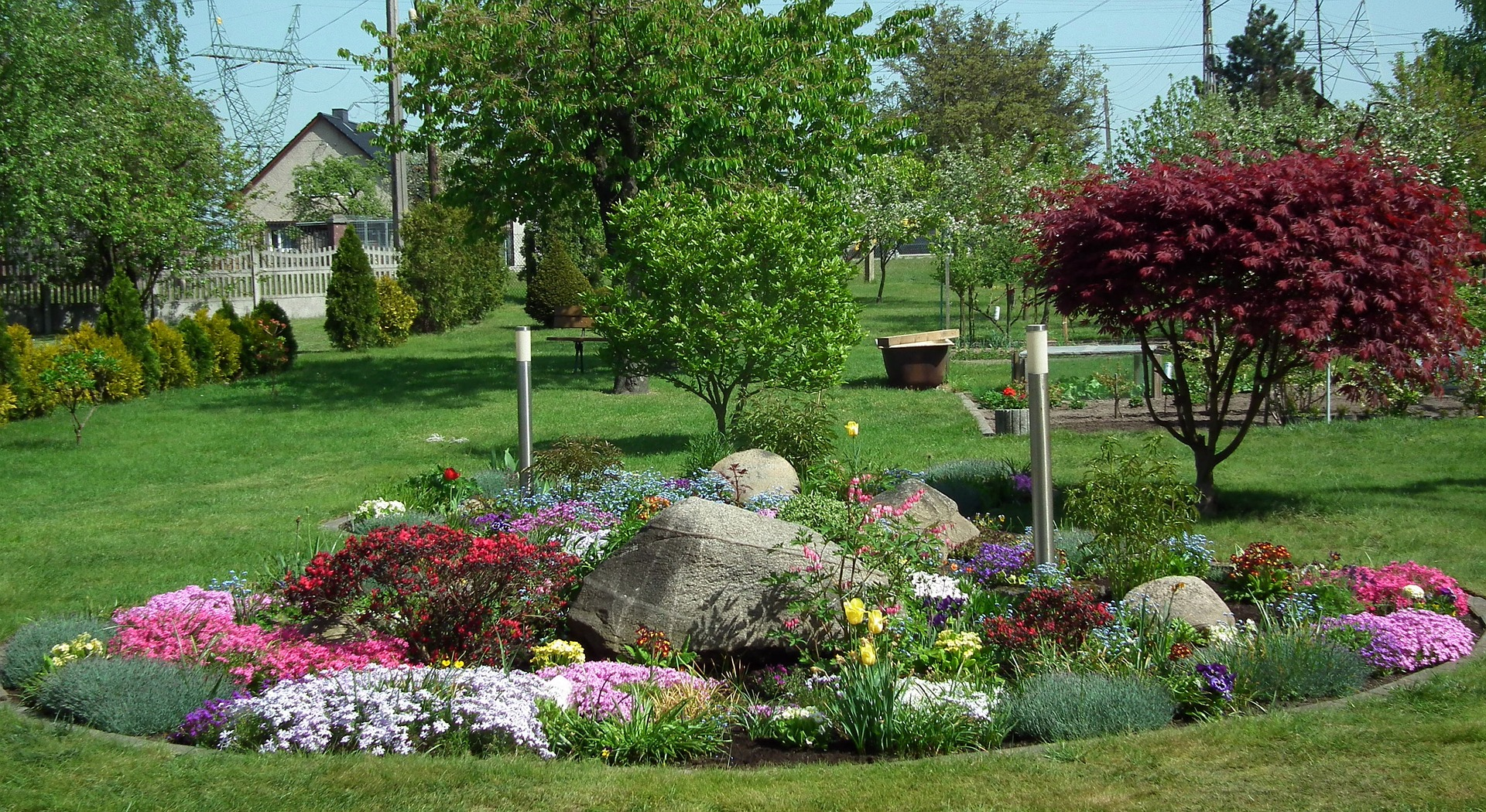 flowers in lawn ideas