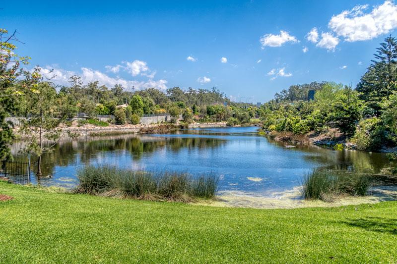 Brisbane Botanic Gardens, Queensland, Australia – Toni from 2 Aussie Travellers