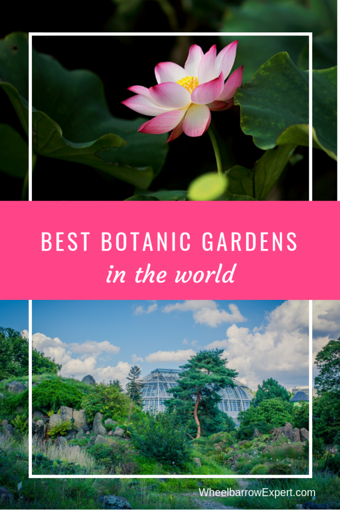Where are the best botanic gardens? Our round up of the best botanical gardens in the world from bloggers, travelers, and gardeners.