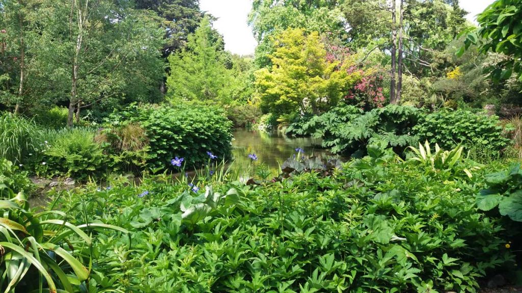Christchurch Botanic Gardens, Christchurch, New Zealand – Emma from Kiwi Money Mum