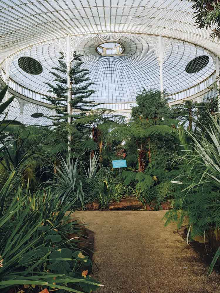 Glasgow Botanic Gardens, Glasgow, Scotland – Nathalie from Map of Joy