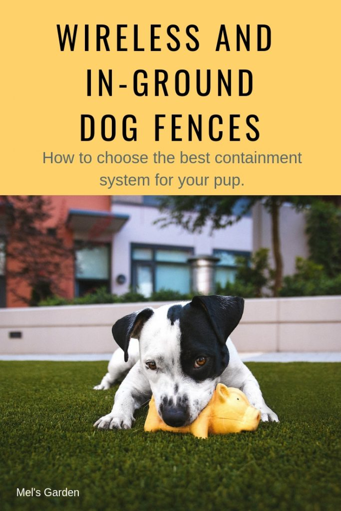 Guide To The Best Wireless Dog Fence and In-Ground Fence : This best underground dog fence review includes everything you need to know to make the best choice for your pet, your yard, and yourself. It includes: wireless pet fence reviews, the best in-ground dog fences, cat fence reviews, and portable fence for pets review. #wirelessdogfence #dogtraining #dogproducts