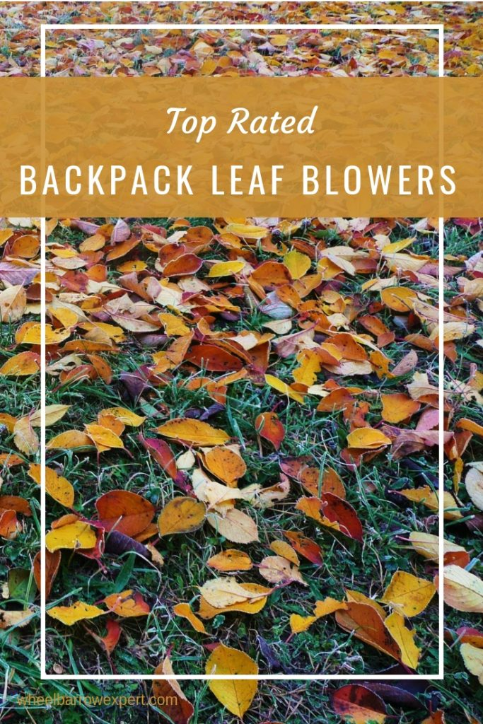 A thorough buying to the best leaf blower backpack. What to look for in the best backpack leaf blower, best leaf blower brands, and where to buy your blower. How to choose a blower. Top rated leaf blowers. #leafblower #gardentools #fallgardening #bestleafblower #bestbackpackleafblower #backpackleafblower #gasleafblower #electricleafblower #cordedleafblower #commercialleafblower #smallleafblower #batteryleafblower   #garden #gardening #backpackblower #blower #leaffree