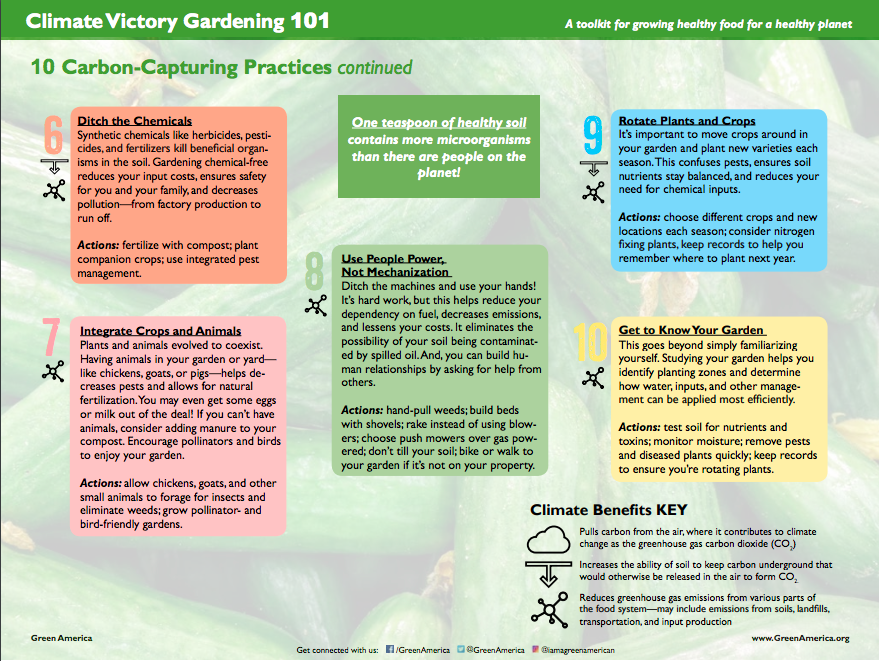 graphic with text describing how to grow a climate friendly garden