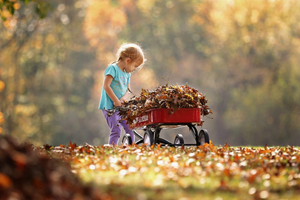 child pushing a wagon of dry leaves